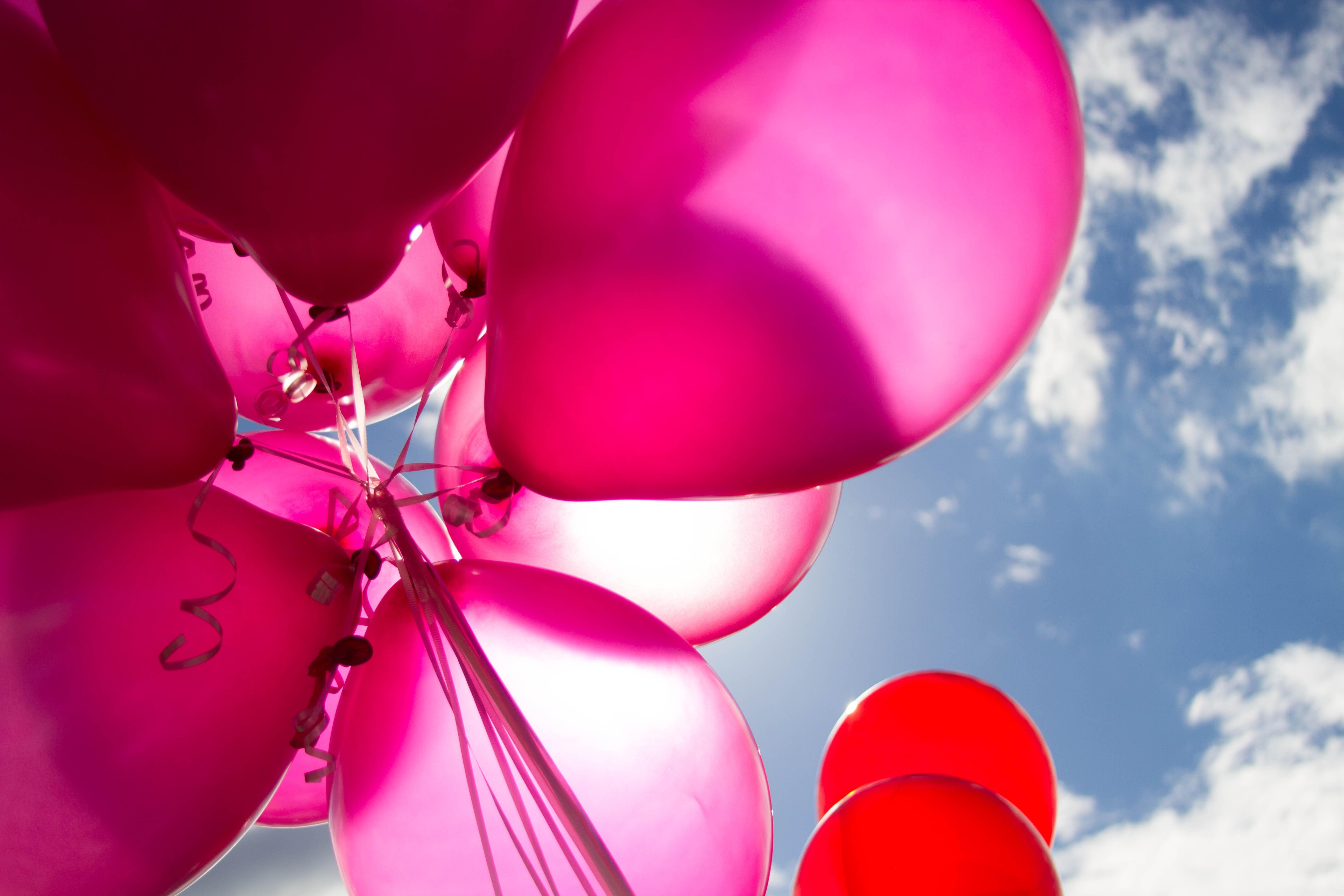 balloons-birthday-bright-226718